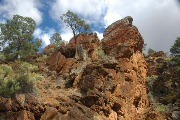 Warrens Gorge